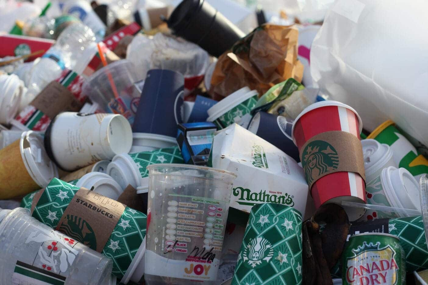 """""""biodegradable cups"""""""